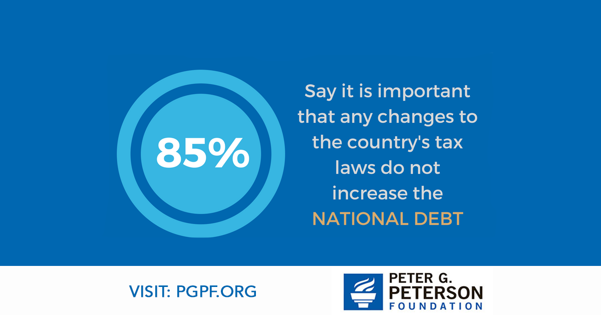 85% say it is important that any changes to the country's tax laws do not increase the national debt