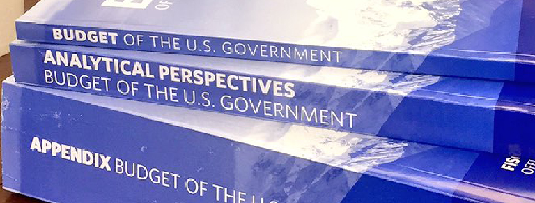 Budget of the U.S. Government