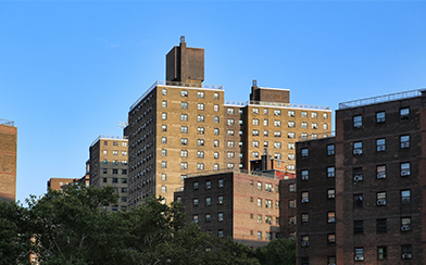 Public Housing New York City